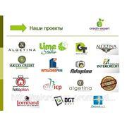 Логотип, фирменный стиль, брендбук фото