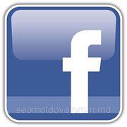 Продвижение и создание групп в Facebook фото