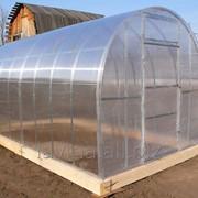 Теплица Рязаночка 3*2.5м цинк, длина 8000 мм, поликарбонат 4 мм, 15 лет заводской гарантии фото
