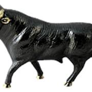 Скульптура Бык 23х13см. арт.BP-01356 Belo De Bronze фото