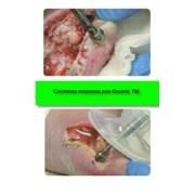 Лечит острые и хронические раны Ультразвуковая система терапии ран QuosticTM- удобно и эффективно фото