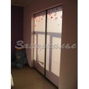 Двери для шкафов с оформлением бабочками фото