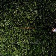 Искусственная трава Берта фото