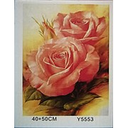 Y5553 картина по номерам Роза набор для раскрашивания фото