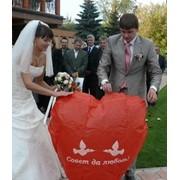 Запуск небесных фонариков на свадьбах фото