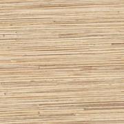 Стеновая панель 150/305 см, тростник фото
