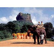 Туры в Шри-Ланку с вылетом из Одессы! Лучшие цены! фото
