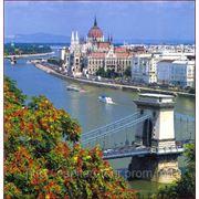 Романтическое Рандеву! Вена + Будапешт фото
