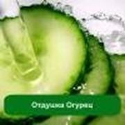 Отдушка Огурец - 1 литр фото