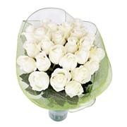 25 роз любого цвета с бесплатной доставкой фото