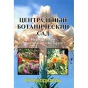 Центральный ботанический сад Национальной академии наук Беларуси. Путеводитель: Справочное издание фото