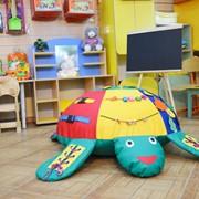 Дидактическая черепаха фото