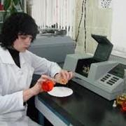 Проведение приемо-сдаточных, контрольных, сертификационных и арбитражных испытаний нефтепродуктов фото