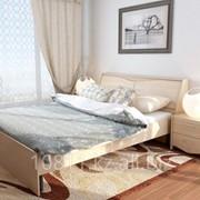 Кровать Мебель Парк Лира Л13 дуб молочный фото