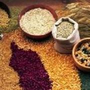 Переработка различных зерновых культур на крупу фото