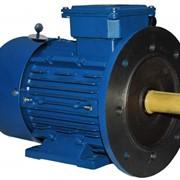 Двигатель асинхронный с электромагнитным тормозом фото