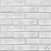 Фасадная плитка TM BRICKSTYLE коллекция The Strand (white) 25*6 см фото