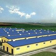 Здания для свинокомплексов из легких стальных тонкостенных конструкций. фото