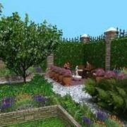 Оформление клумб и цветников Украина фото