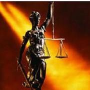 Легализация Министерства юстиции фото