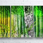 Модульна картина на полотні Бамбук код КМ100180-245 фото