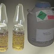 Вакцина ассоциированная против синдрома снижения яйценоскости-76, инфекционного бронхита кур и инфекционной бурсальной болезни инактивированная эмульгированная фото