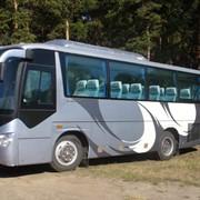 Автобусные экскурсии для детей и школьников фото