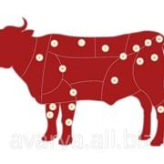 Мясо говядины фото