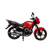 Мотоцикл Viper (Вайпер) ZS150A, консультация, продажа, Украина фото