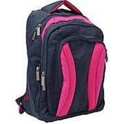 Рюкзак Bagland 'Драйв' 0018970 синий с розовым фото
