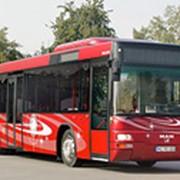 Автобусы междугородные, туристические Lion's City TÜ фото