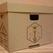 Консультации по разведению пчел фото