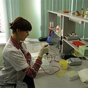 Медицинская молекулярная диагностика фото