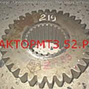 Шестерня МТЗ-1221 КПП вала промежуточного 3-ей передачи РУП МТЗ 1522-1701219 фото