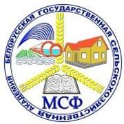 Мелиоративно-строительный факультет фото