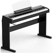 Цифровое пианино Orla Stage Starter, черное, со стойкой фото