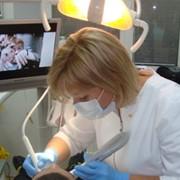 Стоматология Пальмира, ООО фото