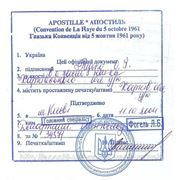 Проставление Апостиля на документах из EU фото