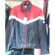 Мужская курточка бренд Moncler фото