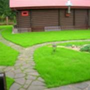 Мощение садовых дорожек фото