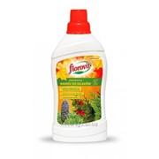 Удобрение Флоровит для хвойных осеннее жидкое, 1 л фото