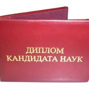 Написание диссертации кандидата наук фото