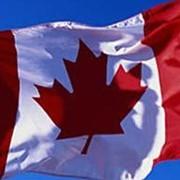 Визы гостевые в Канаду фото