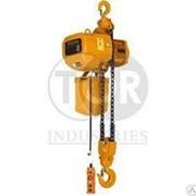 Таль электрическая г/п 3,0т 6 м цепная TOR HHBD03-03 фото