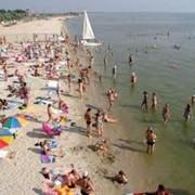 Домики за 100 м на Азовском море сдаем в с.Новопетраковка Бердянского р-на фото