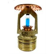 Спринклер TY 4131 (TY-FRB) латунь фото