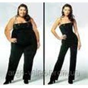 Курсы правильного питания и коррекция веса