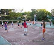 Аренда теннисного корта,волейбол,баскетбол фото