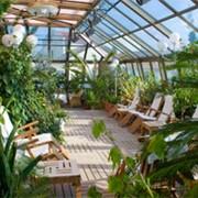 Сады зимние из поликарбоната фото