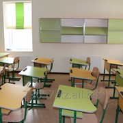 Приватная частная начальная школа фото
